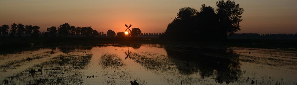reflectie op natuur en mens